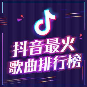 2021年抖音好听的串烧DJ舞曲100首合集 迅雷云盘下载
